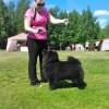 Pyöreän Talon Juhlava Josefiina- Лучший щенок